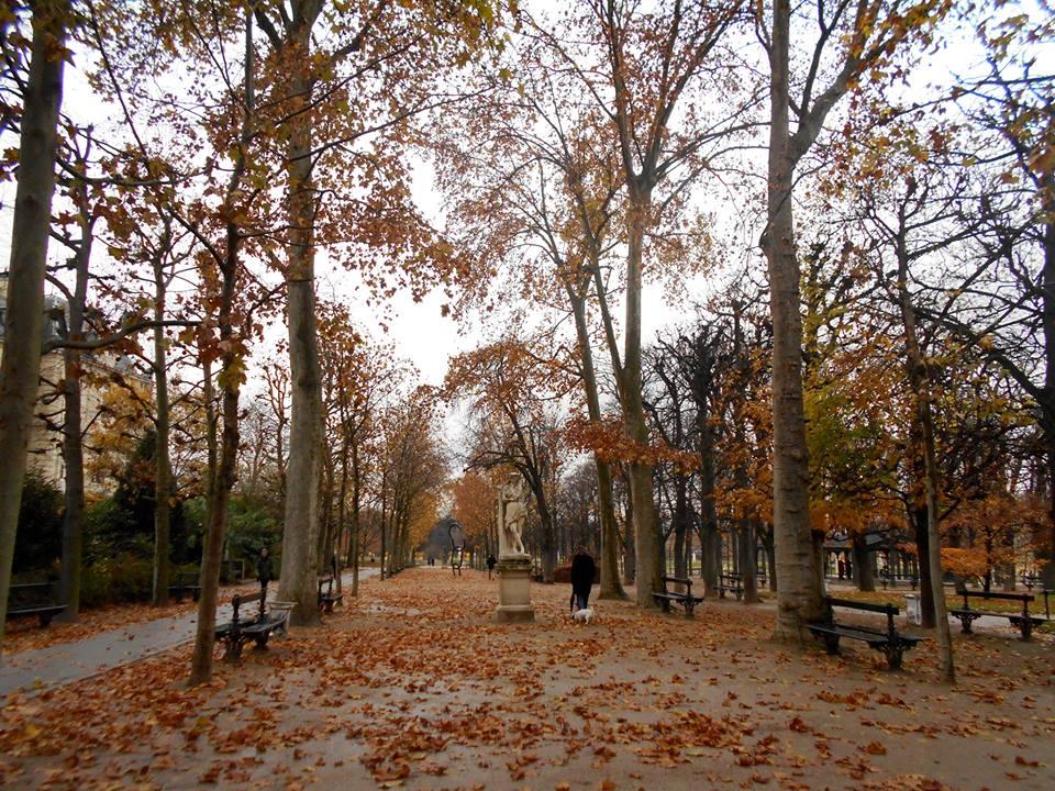 Parc du Luxembourg, Paris 2014