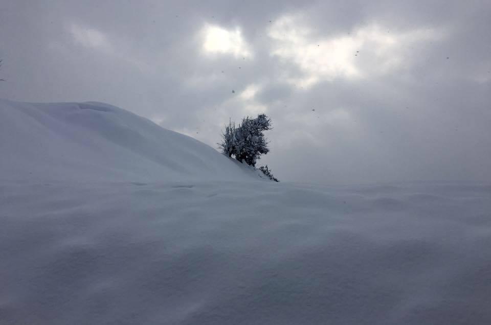 Snowfall, Central Evia, 8.1.17
